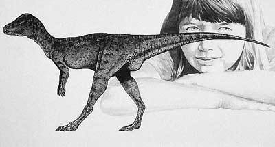 micropachycephalosaurus