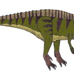 Acrocanthosaurus right view scaled
