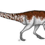Afrovenator left view scaled