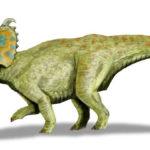 Albertaceratops running