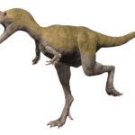 Albertosaurus running
