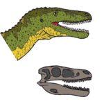 Alectrosaurus head