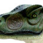 Allosaurus head