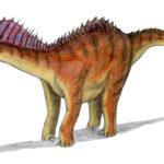 Amargasaurus left view