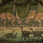 Anchiceratops facing off scaled