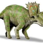 Anchiceratops running