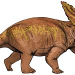 Anchiceratops walking
