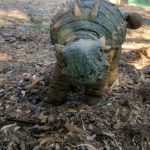 Ankylosaurus baby