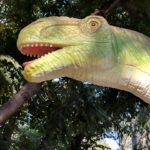 Apatosaurus head