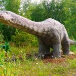 Apatosaurus long neck scaled