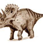 Arrhinoceratops walking