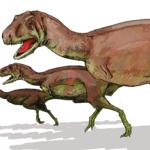 Aucasaurus running