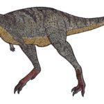 Aucasaurus sharp teeth scaled
