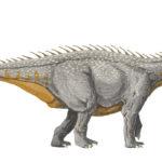 Barapasaurus spikes