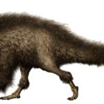 Beipiaosaurus feathered body