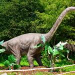 Brachiosaurus wandering
