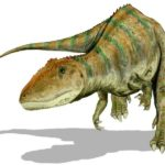 Carcharodontosaurus front view