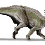 Centrosaurus leggings