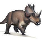 Centrosaurus walking