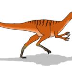 Coelurus walking