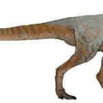 Cryolophosaurus walking
