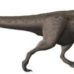 Daspletosaurus running