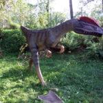 Dilophosaurus long legs