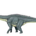 Diplodocus full body length scaled
