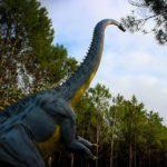 Diplodocus long neck