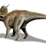 Einiosaurus tail