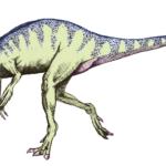 Eoraptor running