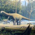 Europasaurus family