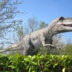 Giganotosaurus standing