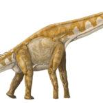 Giraffatitan long neck