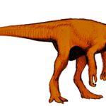 Herrerasaurus model