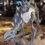 Huayangosaurus skeleton