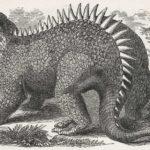 Hylaeosaurus sitting