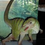 Hypsilophodon standing scaled