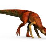 Kritosaurus long tail