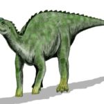 Kritosaurus walking