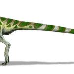 Leaellynasaura walking