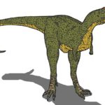 Majungasaurus front view