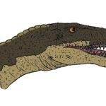 Masiakasaurus head scaled