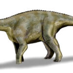 Nigersaurus left view