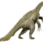 Nothronychus with long claws