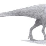 Orodromeus sketch