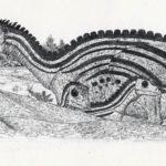 Oryctodromeus family 1 scaled