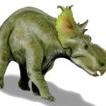 Pachyrhinosaurus full body