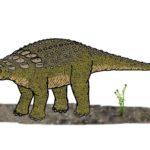 Panoplosaurus standing scaled