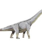 Paralititan long neck scaled